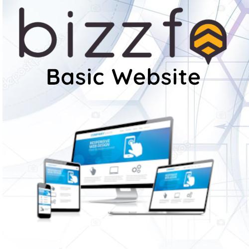 Basic Website Product
